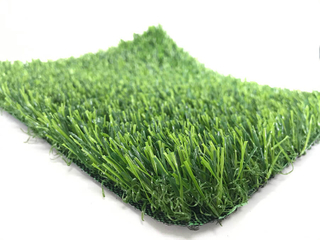 Commercial Landscaping Grass T03